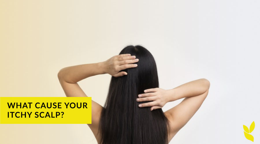 What causes your itchy scalp and how you can treat it?